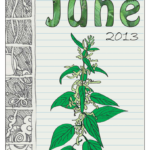 Wild Edible Notebook—June release!