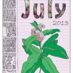 Wild Edible Notebook—July release!!