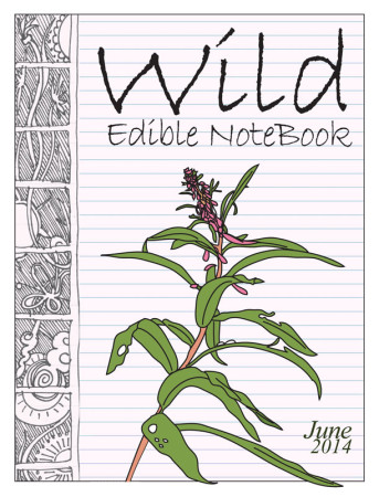June2014 cover 800 343x450 Wild Edible Notebook—June 2014 Release!
