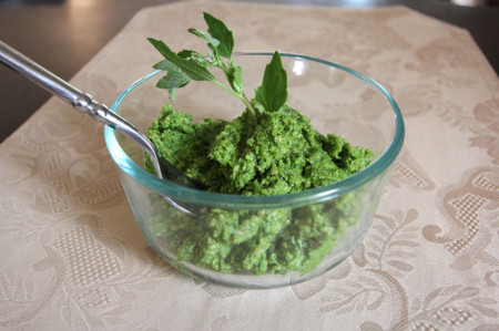 My first pesto, made with mild lambs' quarters greens, sunflower seeds, oil, and garlic. I followed a master recipe by Dina Falconi to create my yummy concoction.