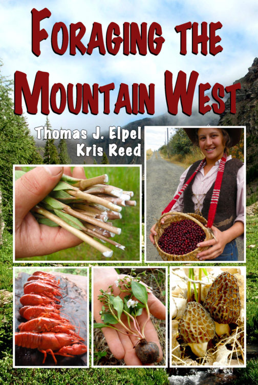 Foraging-the-Mountain-West-cover